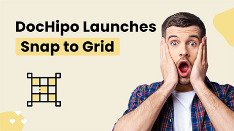 DocHipo-Launches-Snap-to-Grid