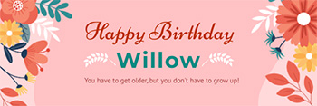 birthday-email-header-template